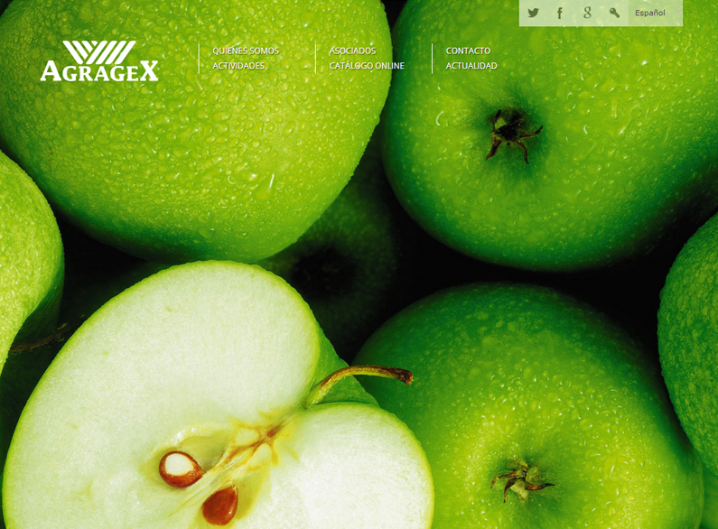 Sitio web para asociación de agricultura y ganadería