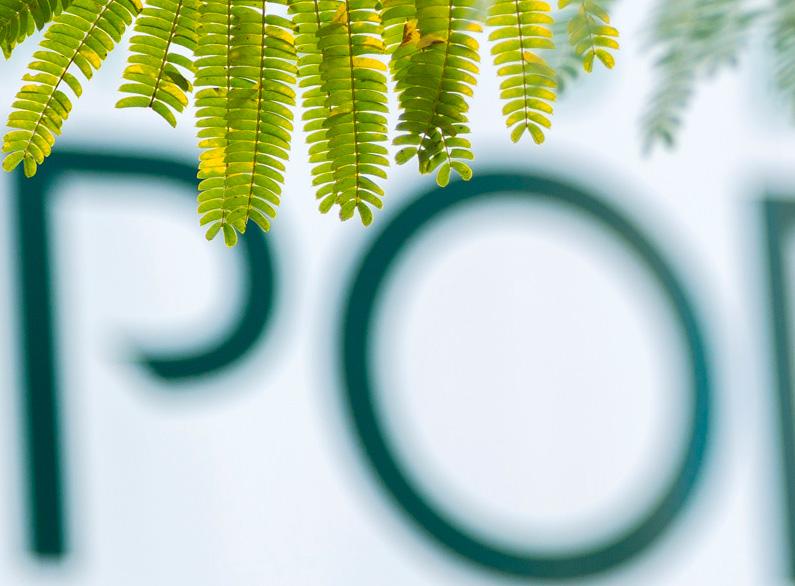 MADERA PORTU actualiza su nueva web corporativa